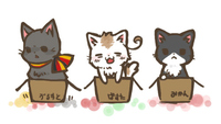 Axis-powers-hetalia-cat-cute-germany-italy-japan-favim.com-62396